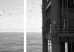 Tanja Engelberts, Passing, 2020 | Diptych | Digital print, resin, bubond, framed | 80 x 40 cm, 80 x 80 cm | Unique