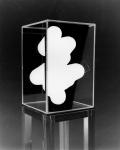 Jaya Pelupessy, Flatten Image011, 2019, Direct negative photograph, framed, passe-partout, museum glass, 45 x 32,5 cm, unicum.