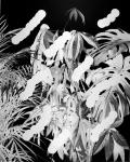 Jaya Pelupessy, Plants, 2019, Direct negative photograph, framed, passe-partout, museum glass, 72 x 51 cm, unique