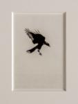 Hans Bol, Untitled 2004-II, negative 2004, print 2021, from the series 'White Crow' | Platinum-palladium print, framed in passepartout w/ museum glass | Image 15 x 10 cm, frame 39,5 x 34 cm | Ed. 3 + 1 AP