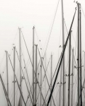 Masts, St. Petersburg, 2018, from the series FloodZone | Archival Pigment Print or Dye-Sublimation Print on Metal | 100 x 80 cm and 127 x 100 cm | ed. 1/5