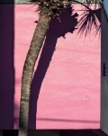 Miami Pink, 2019, from the series FloodZone | Archival Pigment Print or Dye-Sublimation Print on Metal | 100 x 80 cm and 127 x 100 cm | ed. 5/5 (last one)