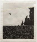 Margaret Lansink, Serene, 2019 | collage printed on Kizuki handmade Washi paper, mended with 23Kt goldleaf | 40.5 x 45 cm | ed. 3 + 2 AP SOLD OUT