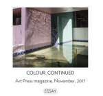 David Campany's essay 'Colour, Continued' is now available in full length. Featuring Anastasia Samoylova