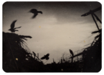 Hans Bol, Untitled #43, negative 2006, printed 2018. Silver gelatin, toning, gold leaf, image size 6,8 x 9,4 cm, framed 30 x 40 cm. Edition 7 + 1 AP