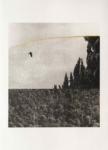 Margaret Lansink, Serene, 2019 | collotype print by Benrido Atelier on handmade Washi paper, reworked by Margaret with 23Kt gold leaf | 56,5 x 41 cm | ed. 2 + 1 AP SOLD OUT