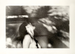 Margaret Lansink, Impermanence, 2019 | collotype print by Benrido Atelier | 41 x 56,5 cm | ed. 2 + 1 AP