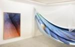 Elsa Leydier, Asa from the series Braços Verdes e Olhos Cheios de Asas, 2019 | installation view | print on cotton, mosquito net | 400 x 150 cm | edition of 3
