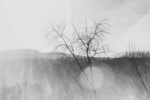 Margaret Lansink, rift, 2019, from the series body maps | Baryta silver gelatin print, enhanced with charcoal from the trees in the Sierra do Accor | Paper size 31 x 44 cm, frame size 50 x 60 cm | Also available in 21 x 26 cm (paper size), 40 x 50 (frame size) | ed. 7 + 2 AP