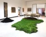 Diana Scherer, Hyper Rhizome installation view,