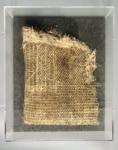 Diana Scherer, Hyper Rhizome #8, 2020 | Plantrootweaving in perspex frame | 50 x 40 cm | Unique