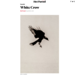 'White Crow' by Hans Bol featured in Het Parool